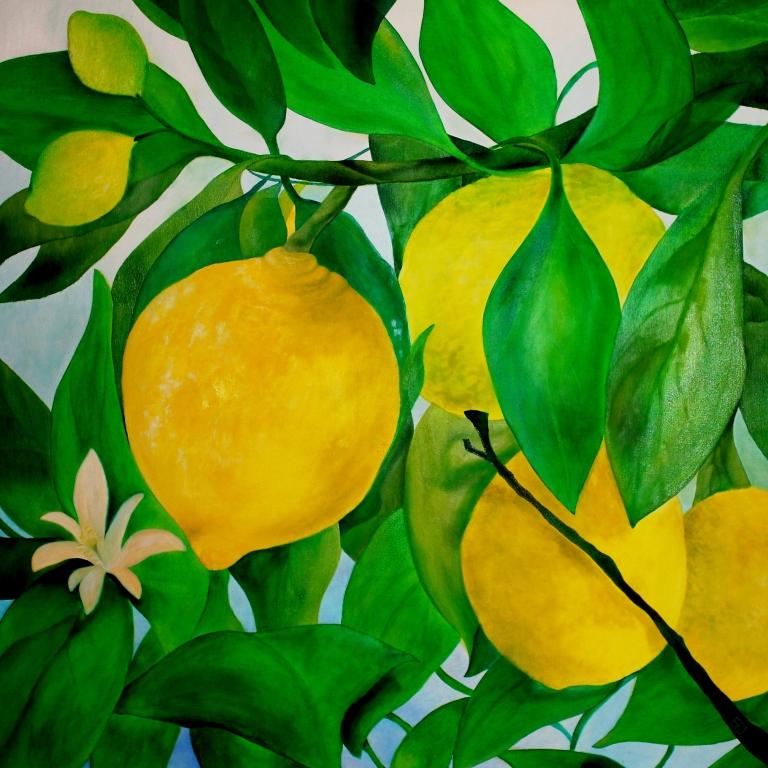 limone olio su tela m 1x1